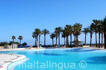 Hilton Malta, piscina con vista sul mare