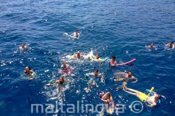 Un gruppo di studenti di lingua inglese nuotano insieme.