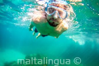 Uno studente che fa snorkelling