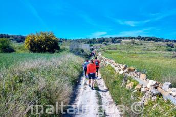 Un gruppo di studenti a piedi attraverso la campagna maltese